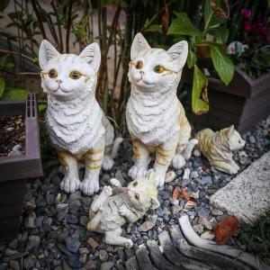 japán macskák cuki