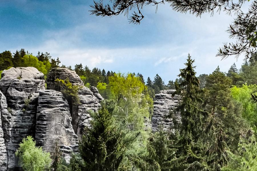 Séta a Cseh Paradicsomban és elmélkedés a felelősségteljes erdőgazdálkodásról